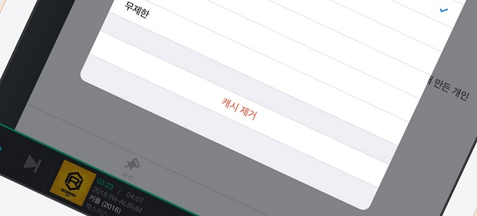 애플 아이폰/아이패드 캐시관리 화면